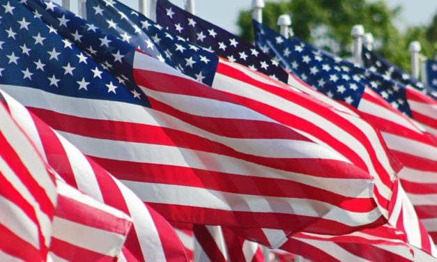 Protest For America In Governmental Plaza July 4